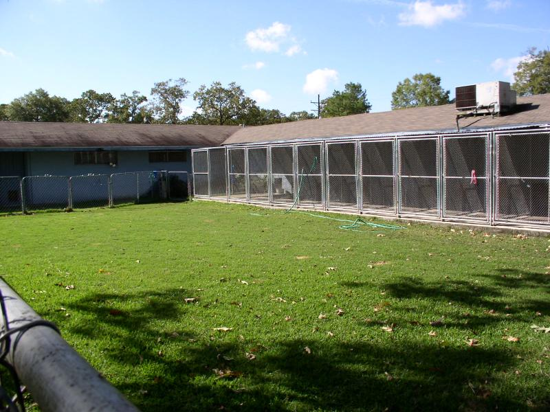 holiday kennels home